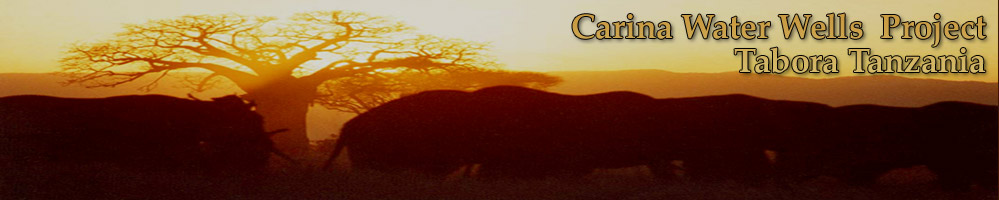 CWW header graphic.
